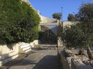 Jeruzsálem. Annak az utcának részlete, melyen Jézus bevonult a Szent Városba és a Templom felé tartott.